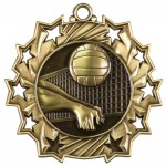 JDS-Ten Star Medal - Volleyball