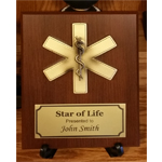 Star of Life Plaque copy